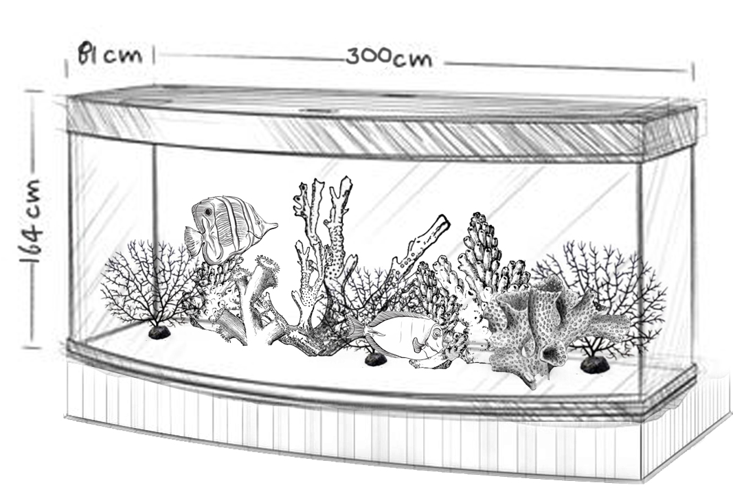 Design Plans for an Infinity Aquarium Design Tank