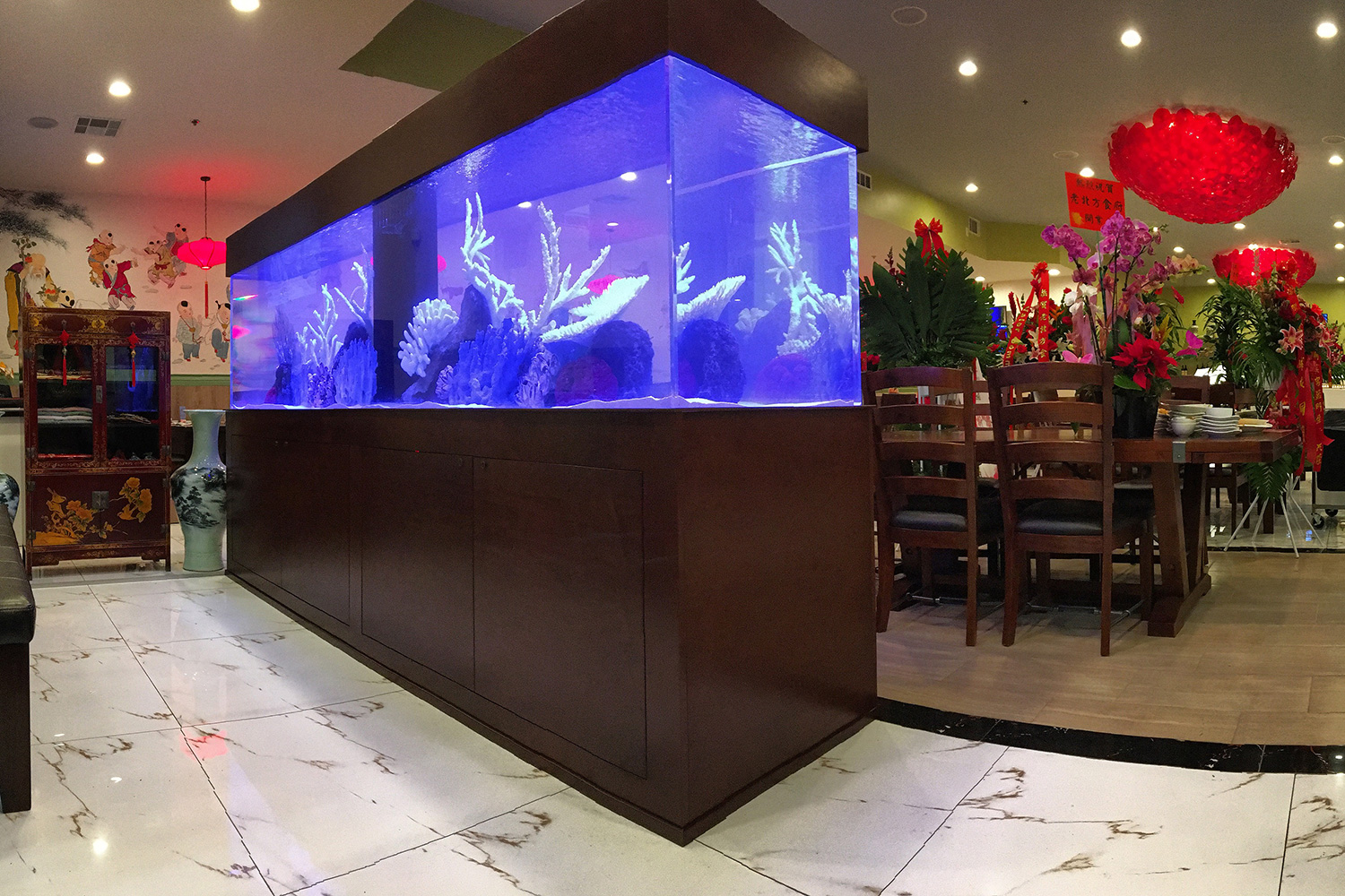 Commercial Custom Aquariums