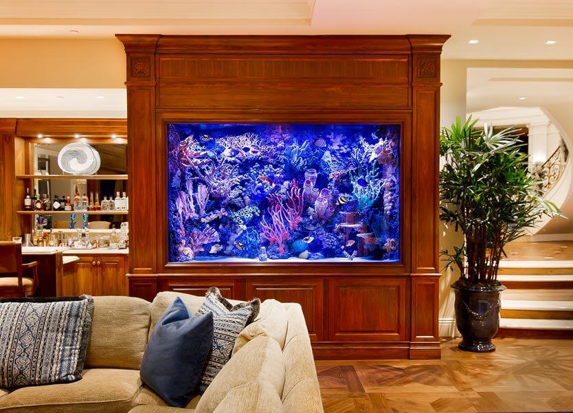 Reliable Aquarium Management