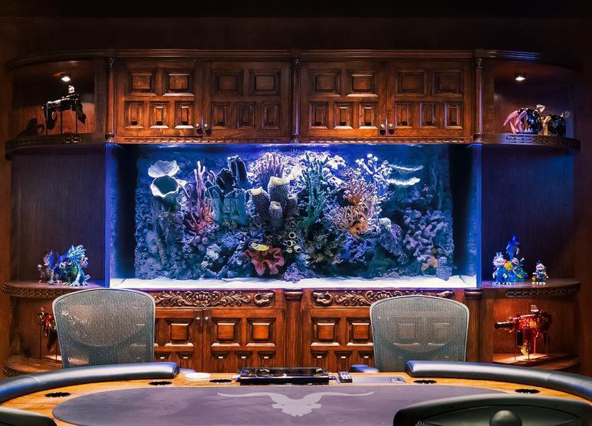 Custom Aquarium Management